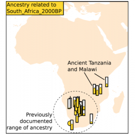 Reconstructing African population history with ancient DNA