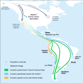 Two previously unknown genetic exchanges between North and South America