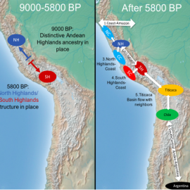 A Paleogenomic Reconstruction of the Deep Population History of the Andes